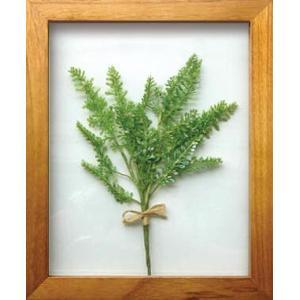 PLANT Frame (プラントフレーム・精密な人工観葉植物)・スタンドタイプ W225×H275×D15mm 0.6kg Artemisia|syoukai-tv