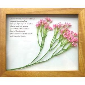 PLANT Frame (プラントフレーム・精密な人工観葉植物)・スタンドタイプ W225×H275×D15mm 0.6kg Star flower/pink|syoukai-tv
