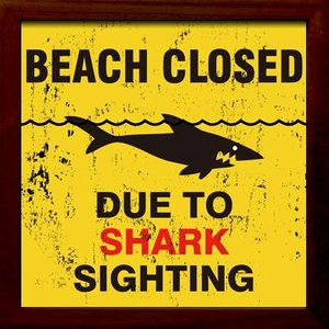 ZSF-52033 SIGN FRAME Shark Sighting|syoukai-tv