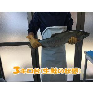 塩引き鮭3キロ台|新潟県村上市から産地直送|身おろし切り身加工|冷蔵発送|syowamaru|03