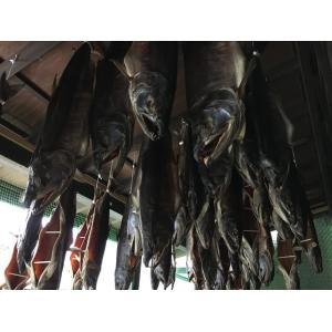 塩引き鮭3キロ台|新潟県村上市から産地直送|身おろし切り身加工|冷蔵発送|syowamaru|04