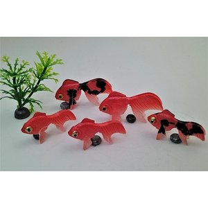 金魚 金魚(出目金)3匹セット+水草セット(金魚(出目金)小2匹・水草)が送料無料で1,100円(代引き不可)|syozan