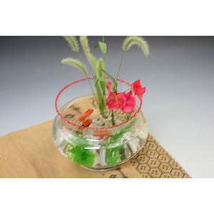 金魚鉢(赤)/金魚/可愛い金魚/癒し系/ ガラス製金魚鉢赤(大)にエサのい らない金魚セット/贈り物/プレゼ ント/うつわの翔山|syozan