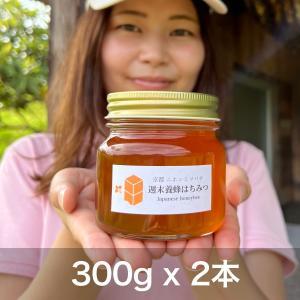 ニホンミツバチの幻のハチミツ 【300g × 2本】|syumatsu-yoho