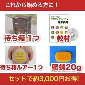 【2/25発送予約】待ち箱ルアーで始める!週末養蜂スタートキット