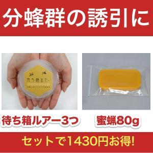 ニホンミツバチ誘引セット!待ち箱ルアー3つと蜜蝋80gのセット|syumatsu-yoho