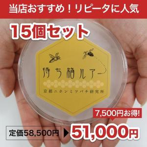 待ち箱ルアー(15個セット)|syumatsu-yoho