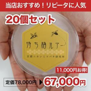 待ち箱ルアー(20個セット)|syumatsu-yoho