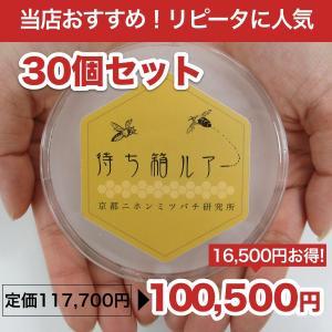 待ち箱ルアー(30個セット)|syumatsu-yoho