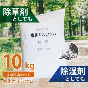 除雪用塩化カルシウム 10kg 粒状 [塩カル 雪かき 凍結防止剤 融雪剤]|syumicolle
