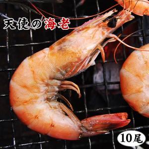 内容量 天使の海老×10尾セット (ニューカレドニア産) 海鮮BBQに♪網焼き等のバーベキューで大活...