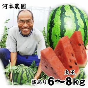 大玉スイカ 1玉 (6-8kg程度) 鳥取県産北栄町