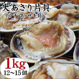 (BBQ バーベキュー アサリ)大あさり片貝(ウチムラサキ貝)(1kg(12-15個)入り)[冷凍]...