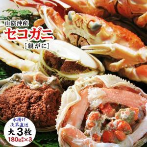 (かに カニ 蟹 特産品 名物商品)セコガニ(親がに・勢子がに)訳あり[生]大 3枚セット(180g前後が3枚入)送料無料*|syun-sakana