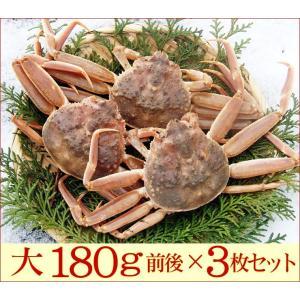 (かに カニ 蟹 特産品 名物商品)セコガニ(親がに・勢子がに)訳あり[生]大 3枚セット(180g前後が3枚入)送料無料*|syun-sakana|04