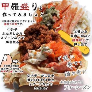 (かに カニ 蟹 特産品 名物商品)セコガニ(親がに・勢子がに)訳あり[生]1kgセット(5-10枚程度入)送料無料(山陰産)*1配送先で2セット以上購入で1セット増量|syun-sakana|04