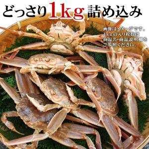 (かに カニ 蟹 特産品 名物商品)セコガニ(親がに・勢子がに)訳あり[生]1kgセット(5-10枚程度入)送料無料(山陰産)*1配送先で2セット以上購入で1セット増量|syun-sakana|05
