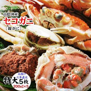 (かに カニ 蟹)[予約]セコガニ(親がに・勢子がに)訳あり[生]特大 5枚セット(200g前後が5枚入)送料無料*|syun-sakana