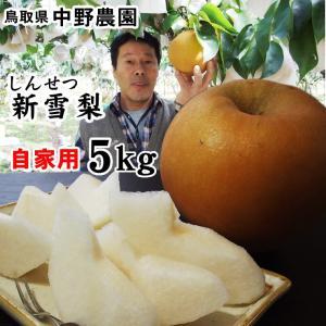 中野農園の梨