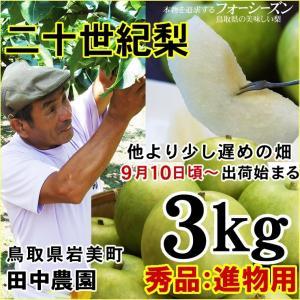 梨 20世紀梨 田中農園 二十世紀梨 3kgセット 秀品 進物用 8-12玉入り 送料無料 常温 鳥取県産 農家指定商品|syun-sakana