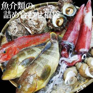 魚介類の詰め合わせセット(魚介類2〜3品程度入)送料無料