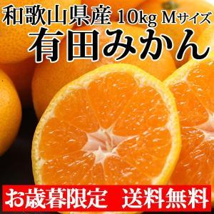 有田みかん Mサイズ 10kg 送料無料 和歌山県産