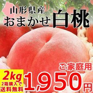 おまかせ 白桃 2kg 山形県産 訳あり ご家庭用 桃 もも 産地直送