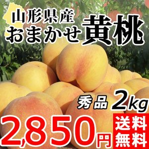 黄桃 2kg 送料無料 秀品 山形県産 桃 もも 黄金桃 産地直送
