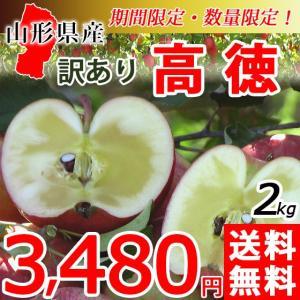 こうとく 高徳 りんご 送料無料 葉取らず 1.5kg 限定 50セット 山形県産 産地直送