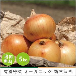 有機玉ねぎ 5kg オーガニック 有機栽培 有機野菜 野菜 化学肥料・農薬不使用  産地 直送 送料無料|syunsaifarm