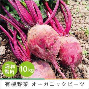 有機ビーツ 10kg オーガニック 有機栽培 有機野菜 野菜 化学肥料・農薬不使用 産地直送 送料無料|syunsaifarm