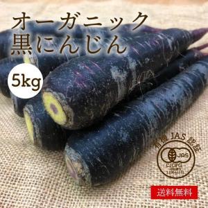 有機黒にんじん 5kg オーガニック 有機栽培 人参 野菜 化学肥料・農薬不使用 産地直送 送料無料|syunsaifarm