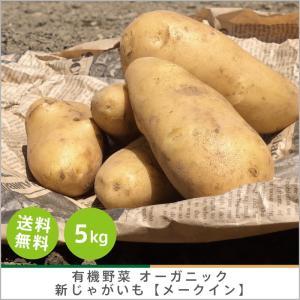 有機じゃがいも 【メークイン】5kg オーガニック 有機栽培 有機野菜 野菜 化学肥料・農薬不使用 産地 直送 送料無料|syunsaifarm