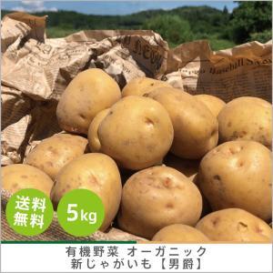 有機じゃがいも 【男爵】5kg オーガニック 有機栽培 化学肥料・農薬不使用 産地 直送 送料無料|syunsaifarm