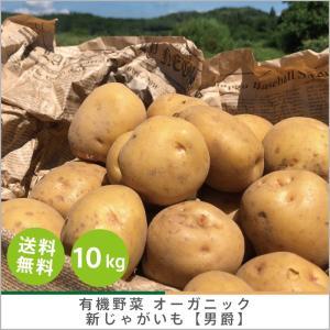 有機じゃがいも 【男爵】10kg オーガニック 有機栽培 有機野菜 野菜 化学肥料・農薬不使用 産地 直送 送料無料|syunsaifarm