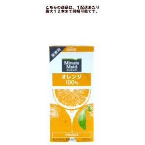 ミニッツメイド オレンジ 100% 1000ml パックの商品画像 ナビ