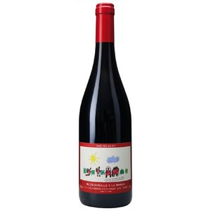 御年賀 お年賀 ギフト ワイン コトー・デュ・ポン・デュ・ガール キュヴェ・デ・ガレ / エステザルグ 赤 750ml フランス ローヌ 赤ワイン|syurakushop