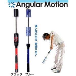アンギュラーモーション Eスイング スイング練習ツール 練習器