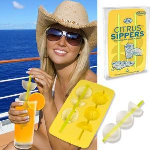 40787 アイストレー シトラスシッパーズ/シトラストレイ製氷皿バカンス氷ストロー柑橘レモン|t-bravo