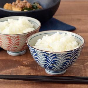 柔らかな線で描かれたシダ模様が優しく映えるご飯茶碗。 品があり、凛とした表情が特徴的な和食器です。 ...