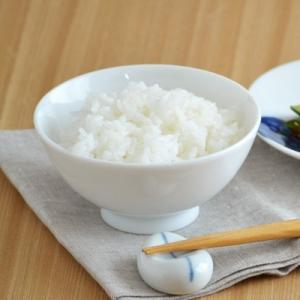 小さめ茶碗 ホワイト      お茶碗 白いお茶碗 子供食器 子供のおちゃわん こども用食器 飯碗 和食器 美濃焼 茶わん ライスボウル おしゃれ 磁器 日本製|t-east