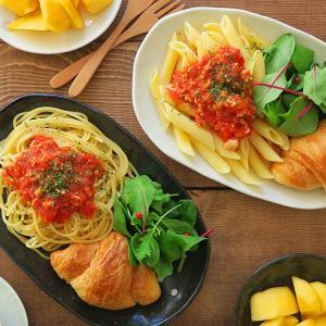 和食器 水玉 楕円パスタ皿(ドットモノトーンシリーズ)カレー皿 カレー皿 和 パスタ皿 和 水玉 楕...