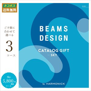 ビームスカタログ ギフト Sky|t-gift-yasan
