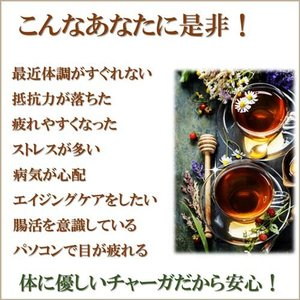 チャーガ茶の極み 森の奇跡茶 シベリア霊芝茶 カバノアナタケ茶 ロシア産 厳選滅菌処理済高品質な商標登録原料100% まずは1袋|t-herb|02