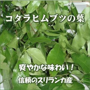 サラシア茶 神の恵みの葉 コタラヒムブツの葉 スリランカ産サラシアレティキュラータ 気になる糖と脂 ダイエットサポートに まずは1袋 送料無料|t-herb|02