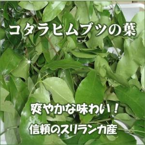 サラシア茶 神の恵みの葉 コタラヒムブツの葉 スリランカ産サラシアレティキュラータ 気になる糖と脂 ダイエットサポートに お得な2袋セット 送料無料|t-herb|02