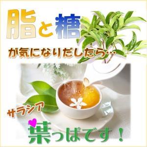 サラシア茶 神の恵みの葉 コタラヒムブツの葉 スリランカ産サラシアレティキュラータ 気になる糖と脂 ダイエットサポートに お得な2袋セット 送料無料|t-herb|03