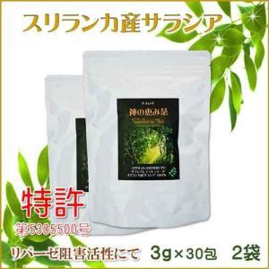 サラシア茶 スリランカ産 神の恵み茶 さわやか美味しいコタラヒムの葉 3g×30包 お得な2袋 サラシアレティキュラータ 血糖値 中性脂肪 便秘 腸活 免疫力|t-herb