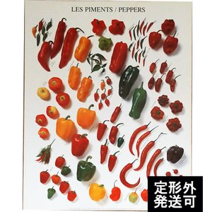 『NOUVELLES IMAGES PEPPERS ヌーベルイマージュ ピーマン&ペッパー』ポスター サイズ50×40cm|t-home