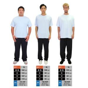ドライ Tシャツ メンズ 半袖 無地 吸汗 速...の詳細画像5